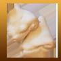 cuernitos-de-grasa